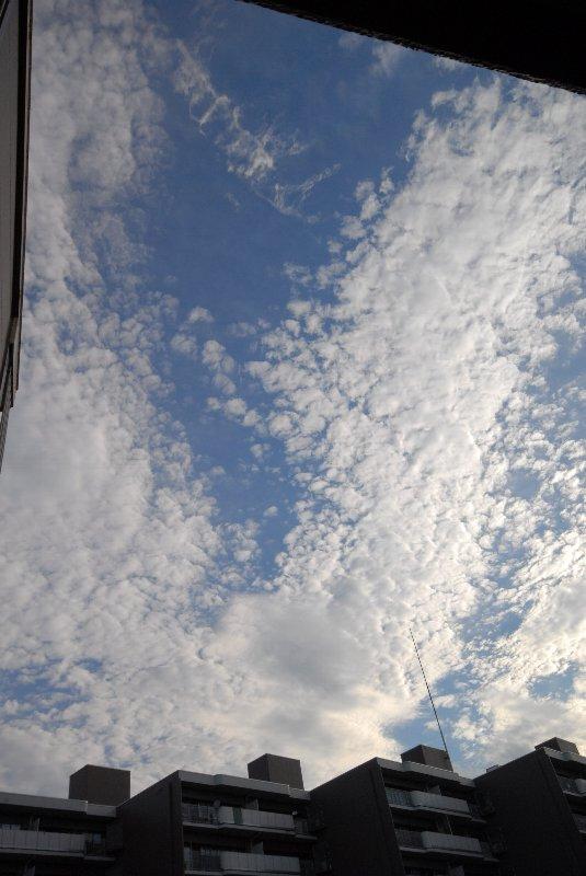 20060714-002515.jpg