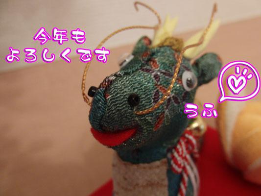 CIMG4644_20120106133808.jpg
