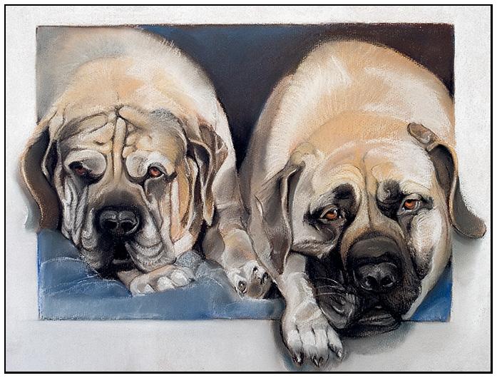 dogs-blog.jpg