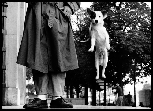 item0_rendition_slideshowHorizontal_elliott-erwitt-ss01.jpg