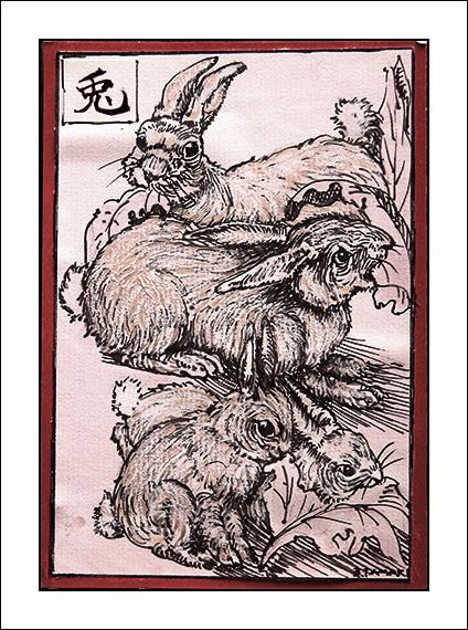 rabbit01a-blog2.jpg