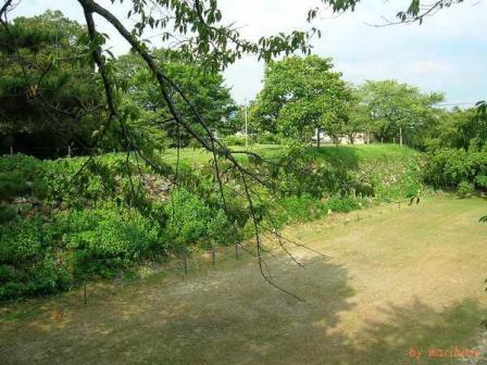 加納城址(本丸石垣・堀跡)