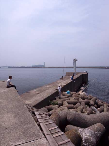 岸和田貯木場