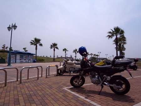 二色浜海浜緑地