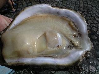 那珂湊 おさかな市場 岩牡蠣