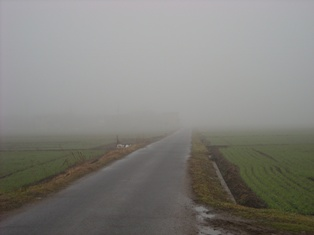 霧がすごい