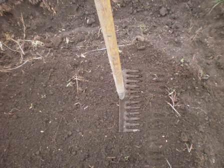 土をかぶせて トントン