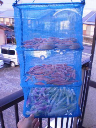 ベランダに干された野菜たち