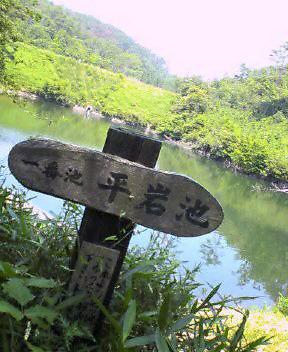 hiraiwa01.jpg