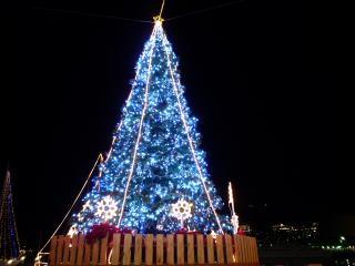 出島ワーフのクリスマスツリー