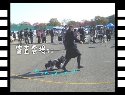 11_1123_06.jpg