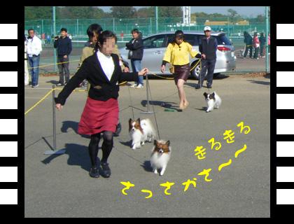 11_1123_07.jpg
