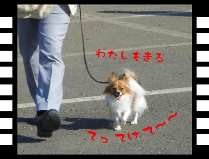 11_1123_09.jpg