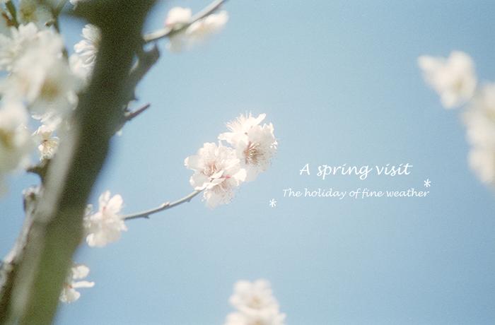 A spring visit