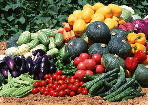 vegetables_500