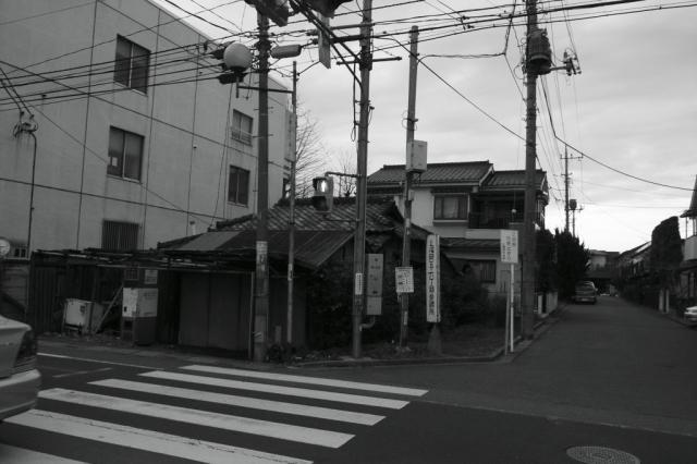 R0010880.jpg