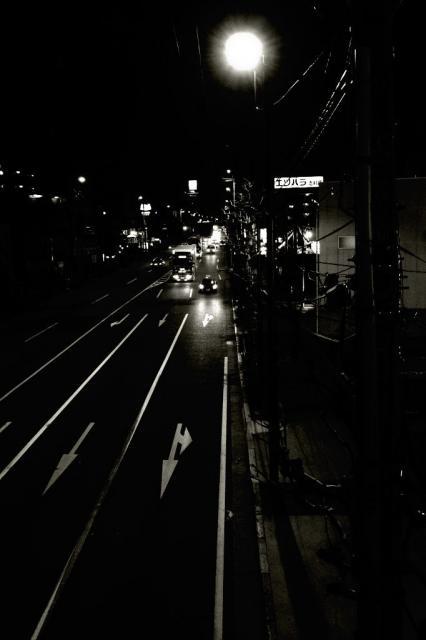 crossing4.jpg