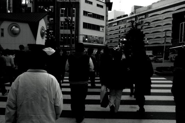 ike_mono7.jpg