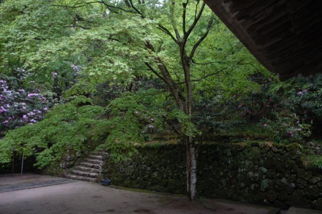 murouji_06.jpg