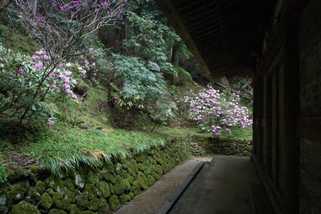 murouji_07.jpg