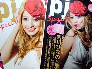 pj Special / Shodensha mook