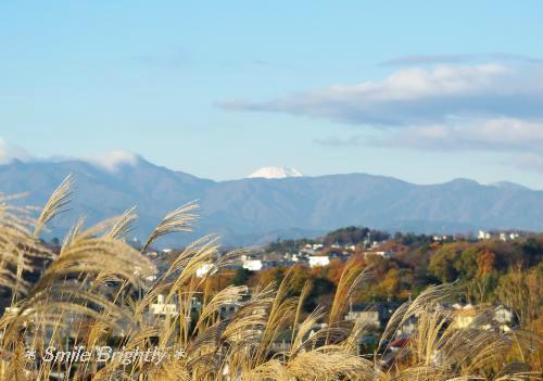 081206富士山