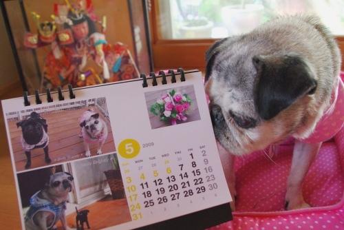 0905025月カレンダー