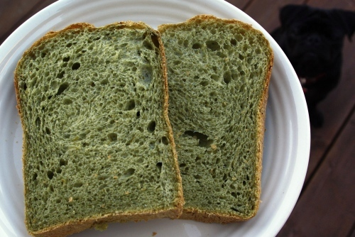 090506よもぎパン♪