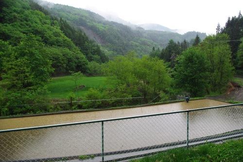 090524雨