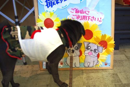 090812撮影コーナー☆