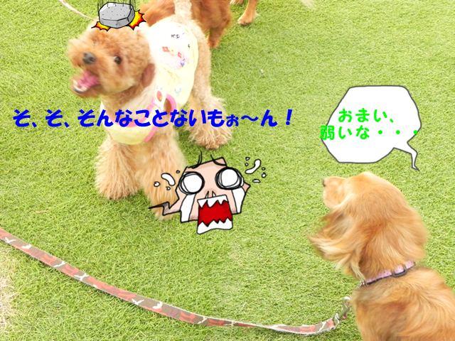 がーん!!