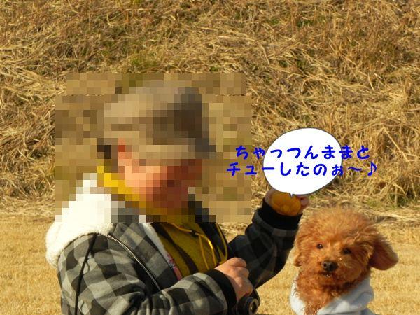 DSCN9636.jpg