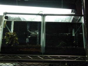 2009101901.jpg