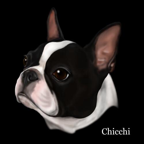 chicchi.jpg