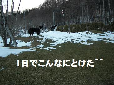 g 003