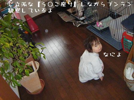 090208②
