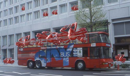 kanibus2.jpg