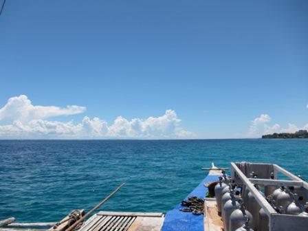 blog_フィリピンダイビング110211