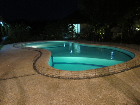 blog_ホテルのプール120211