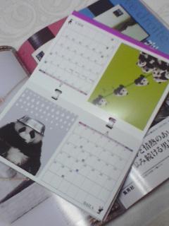 来年のカレンダー(パンダ)