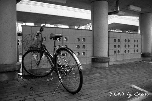 モノクロスナップ「自転車」