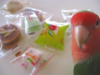 ひとくち和菓子お楽しみセット2