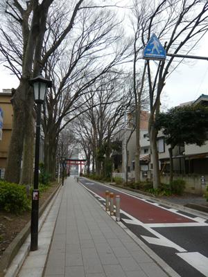 氷川参道へ続く道