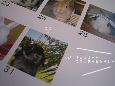 s11-IMG_6598.jpg