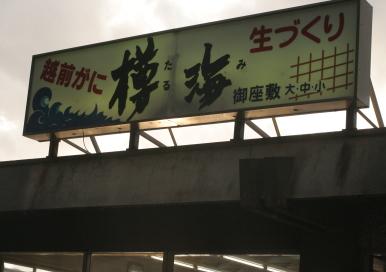 tarumi-3.jpg