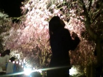 桜と戯れるサッチャーの図
