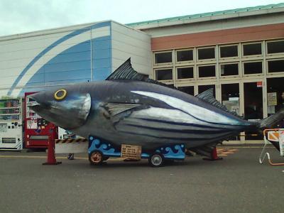世界最大の魚発見!
