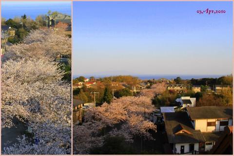2010_04_03.jpg