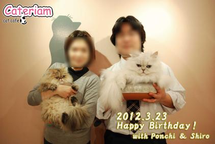 20120323birth.jpg