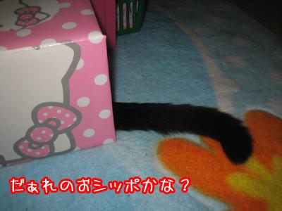 0-1_20081122132448.jpg